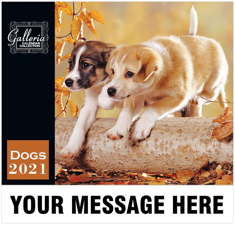 Galleria Dogs -2021