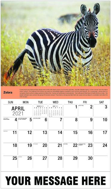 Galleria International Wildlife -2021